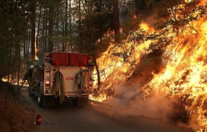 A firefighter from Ebbetts Pass Fire District monitors a back fire as he battles the Rim Fire on August 21, 2013 in Groveland, California. The Rim Fire continues to burn out of control and threatens 2,500 homes outside of Yosemite National Park. Over 400 firefighters are battling the blaze that is only 5 percent contained.